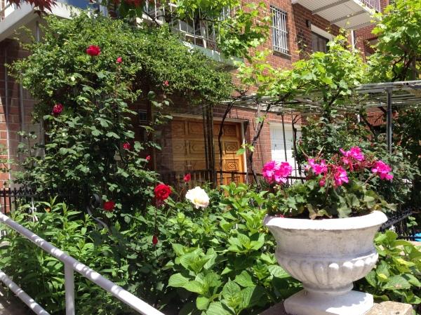 Astoria-nyc-garden