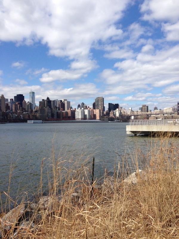 long-island-city-view