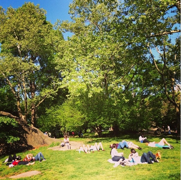 central-park-summer