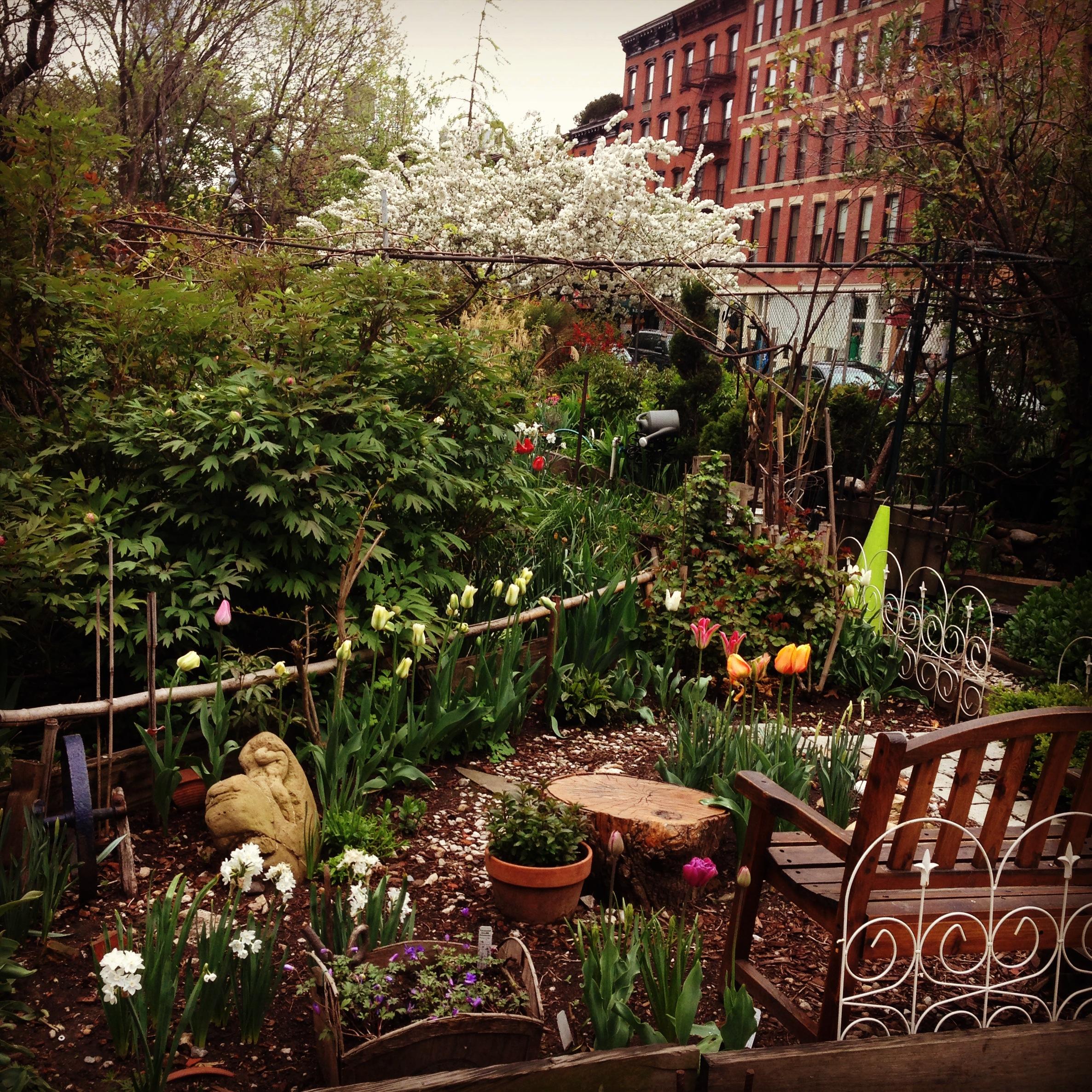 Secret Gardens of New York | When Nutmeg Met Basil